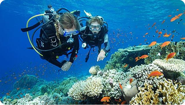 Beautiful_Corals_in_Honda_Bay
