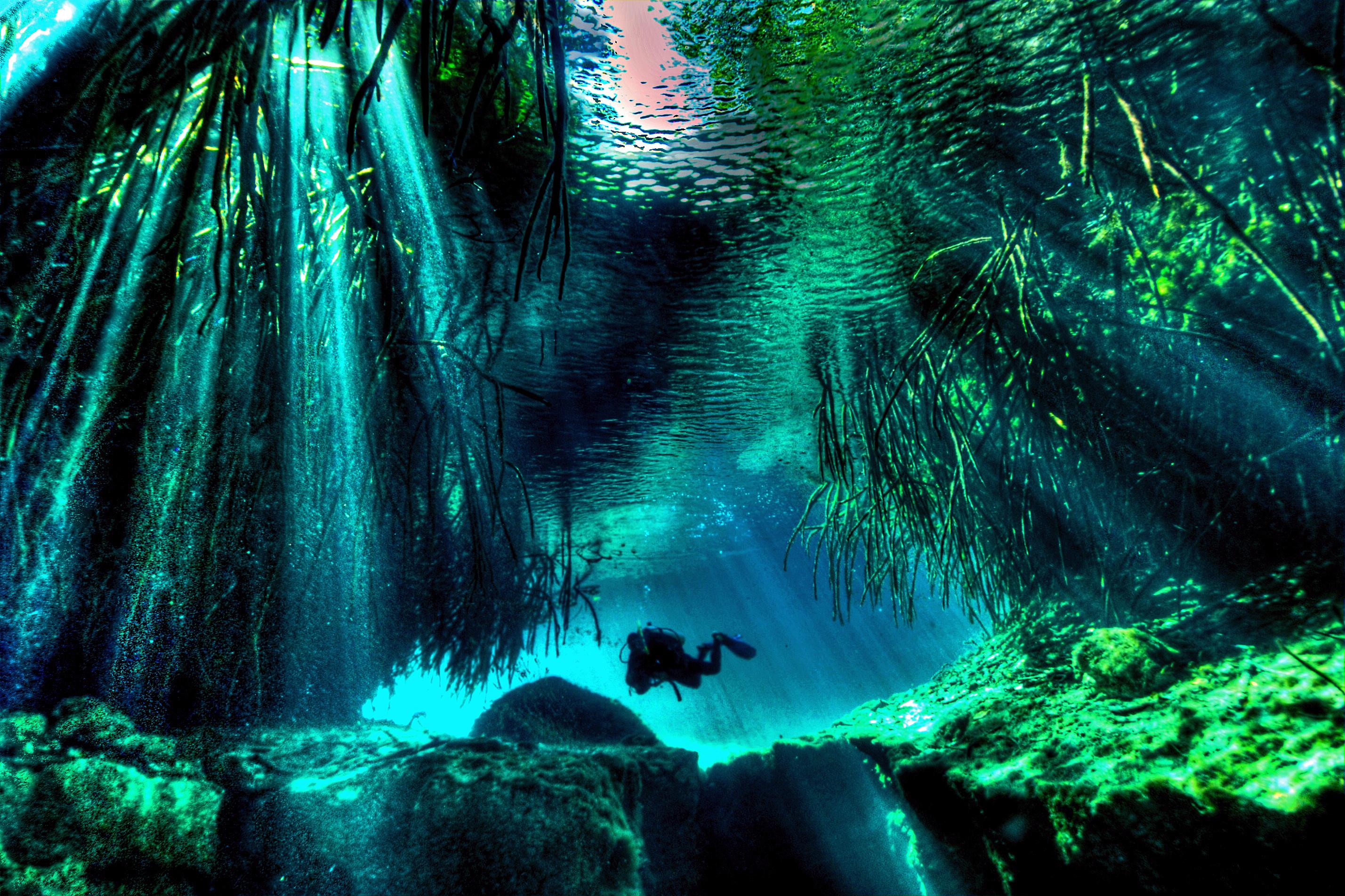 Image Credit : mexicocavediving