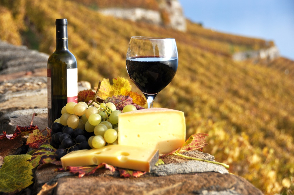 Wine tasting at Hunter Valley in Australia