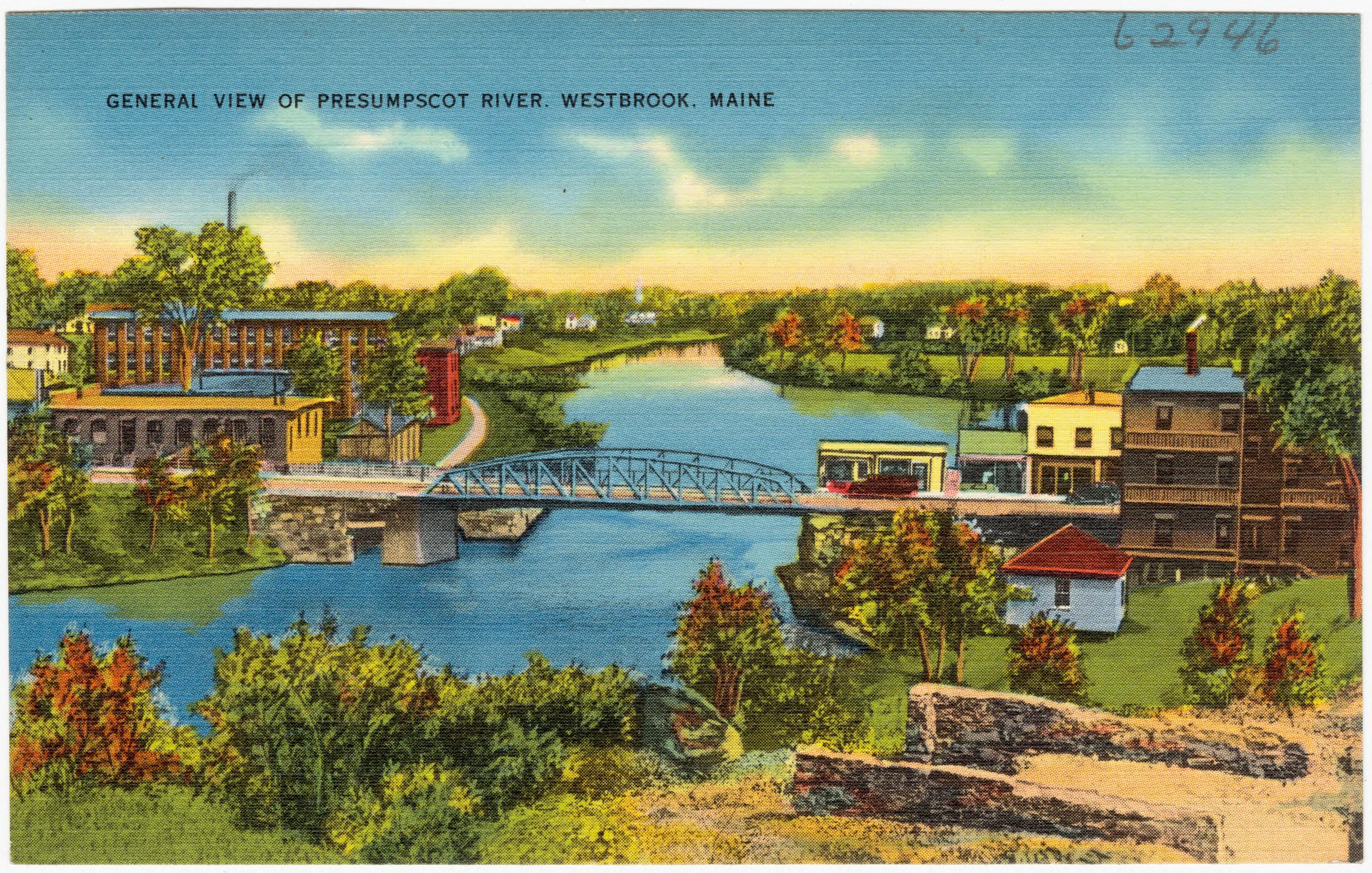 General_view_of_Presumpscot_River,_Westbrook,_Maine_(62946)