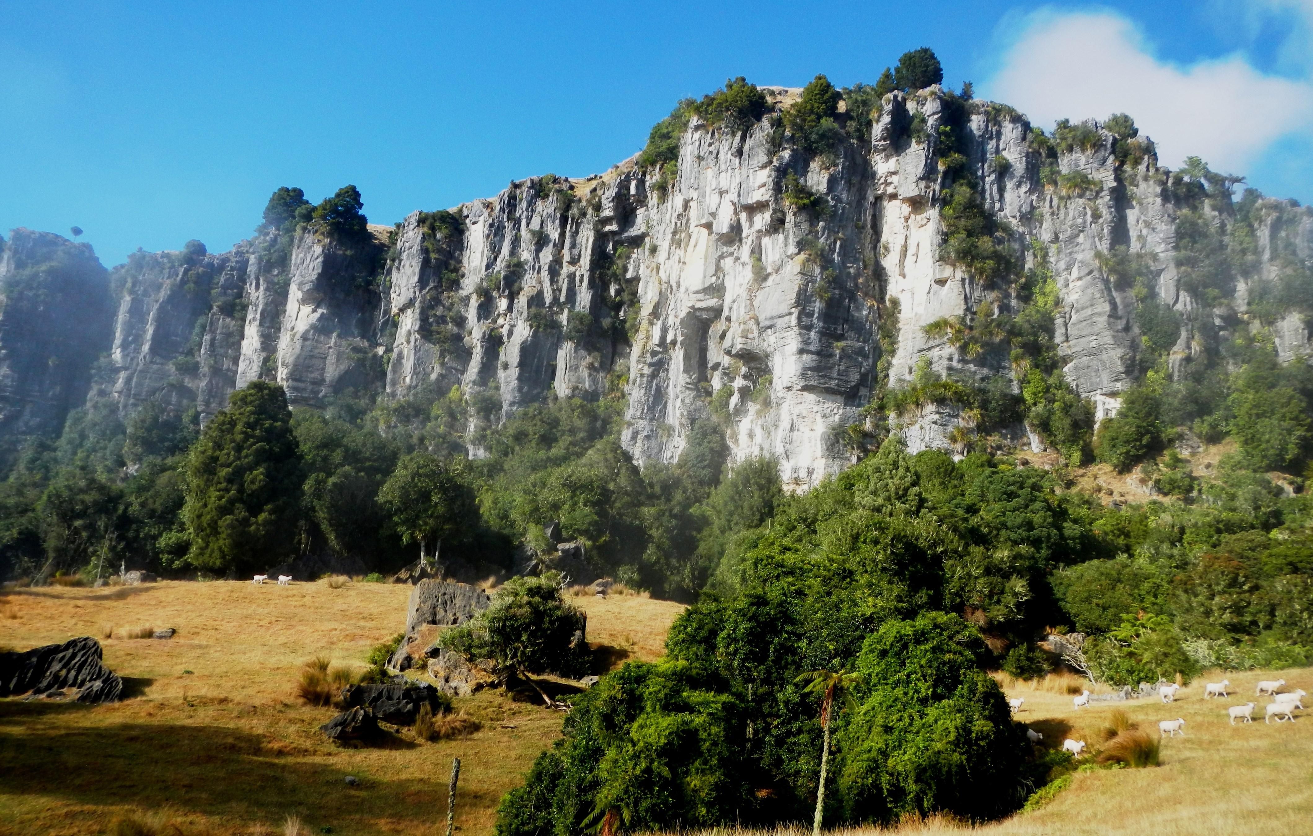 The Mangaotaki Rocks in Piopio
