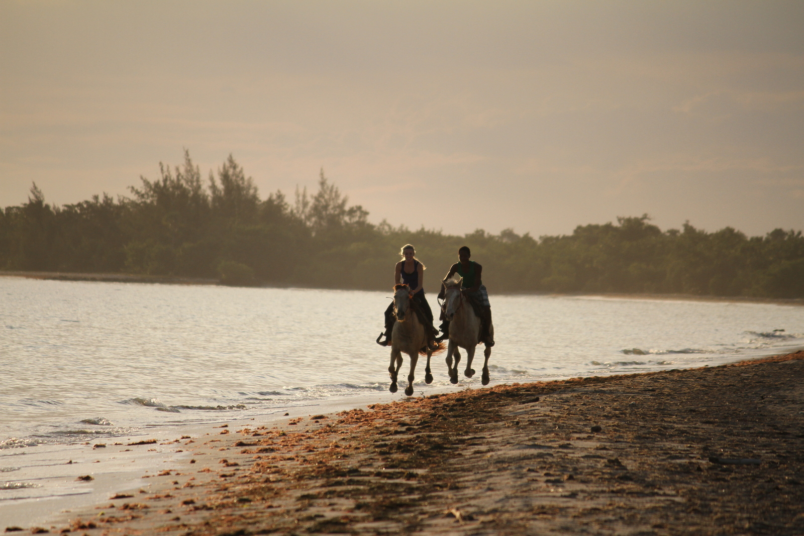 Representative image for couple horse riding activity on Ocean Road