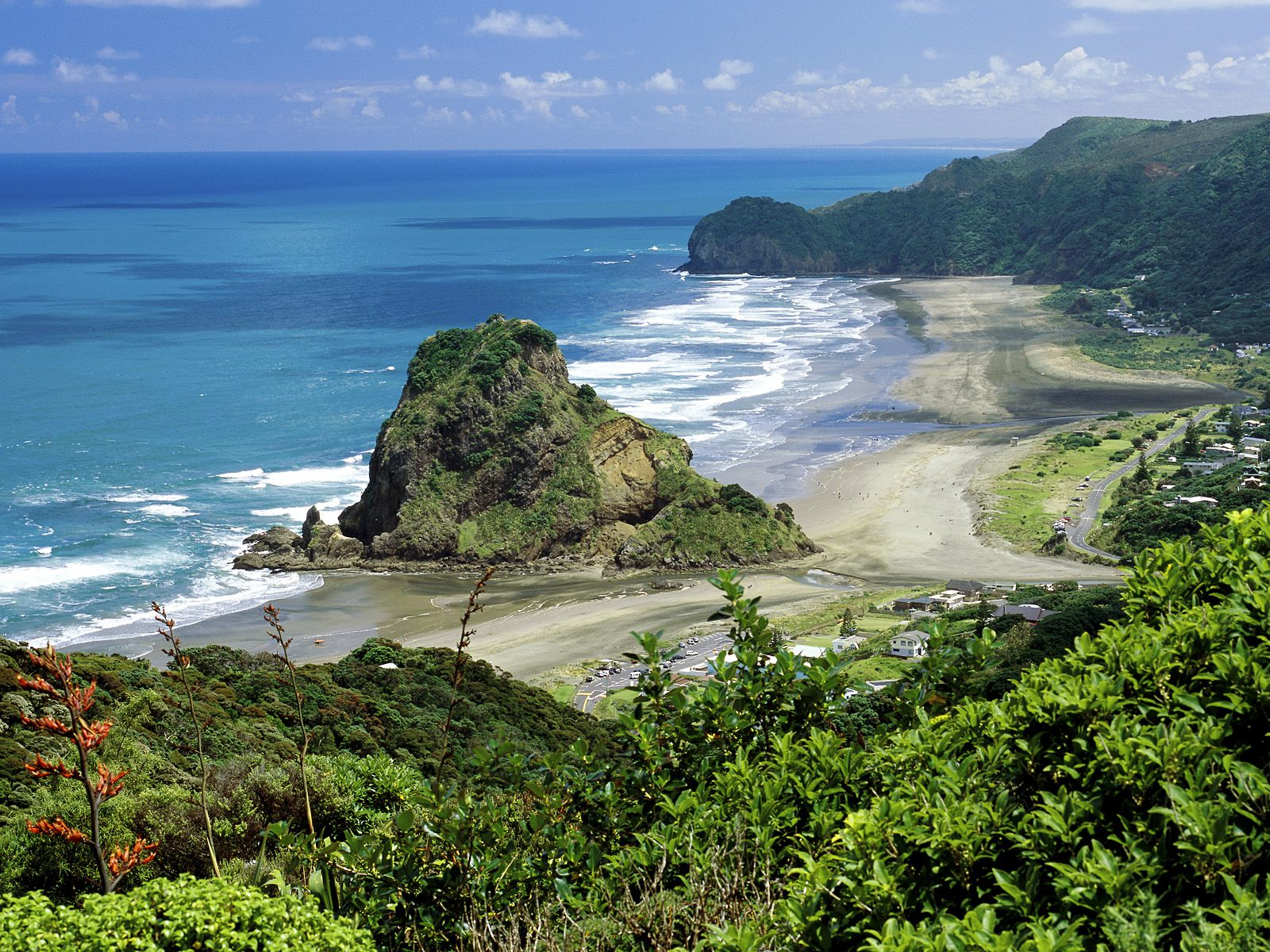 Piha-beach-New-Zealand