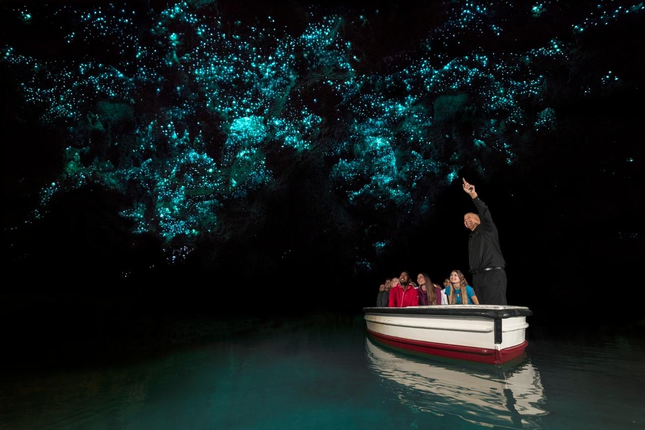 New Zealand glow worm caves