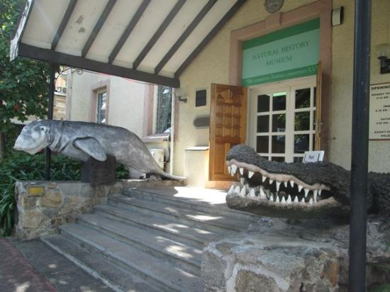 Seychelles Natural History Museum