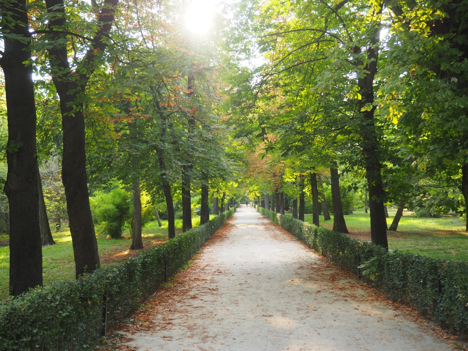 Inside Retiro park