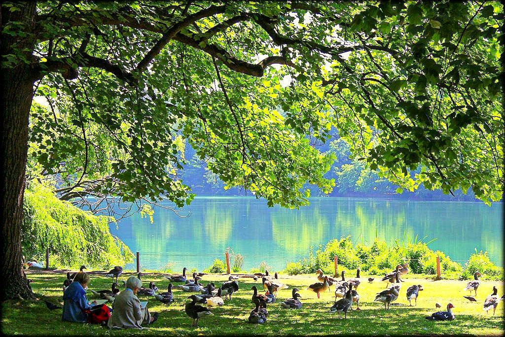 things to do in lyon, Parc de la Tête d'Or