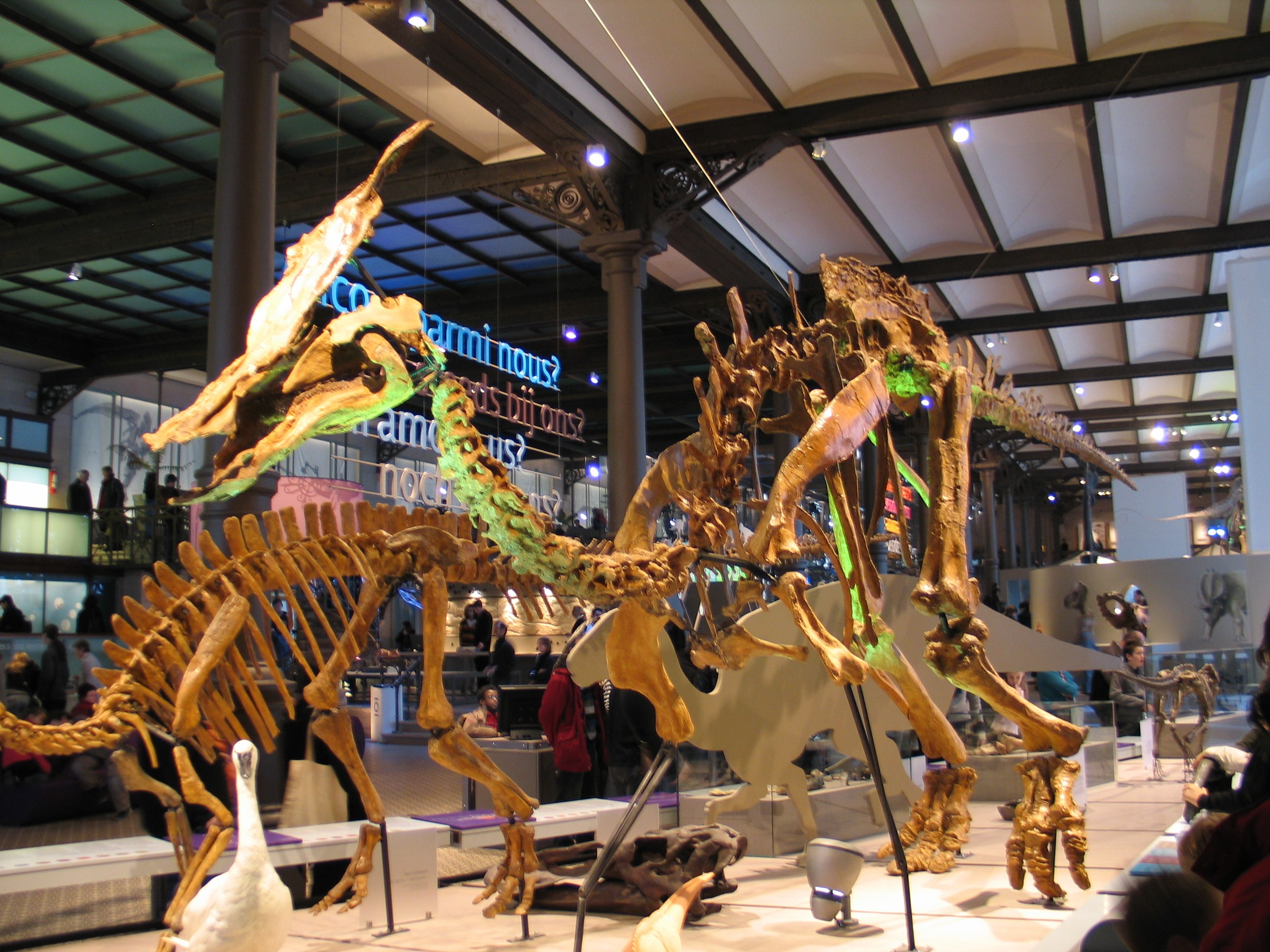 Aathal Dinosaur Museum, Top things to do with family during Swiss vacations