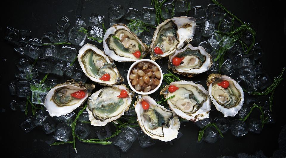 oysters,Australia travel