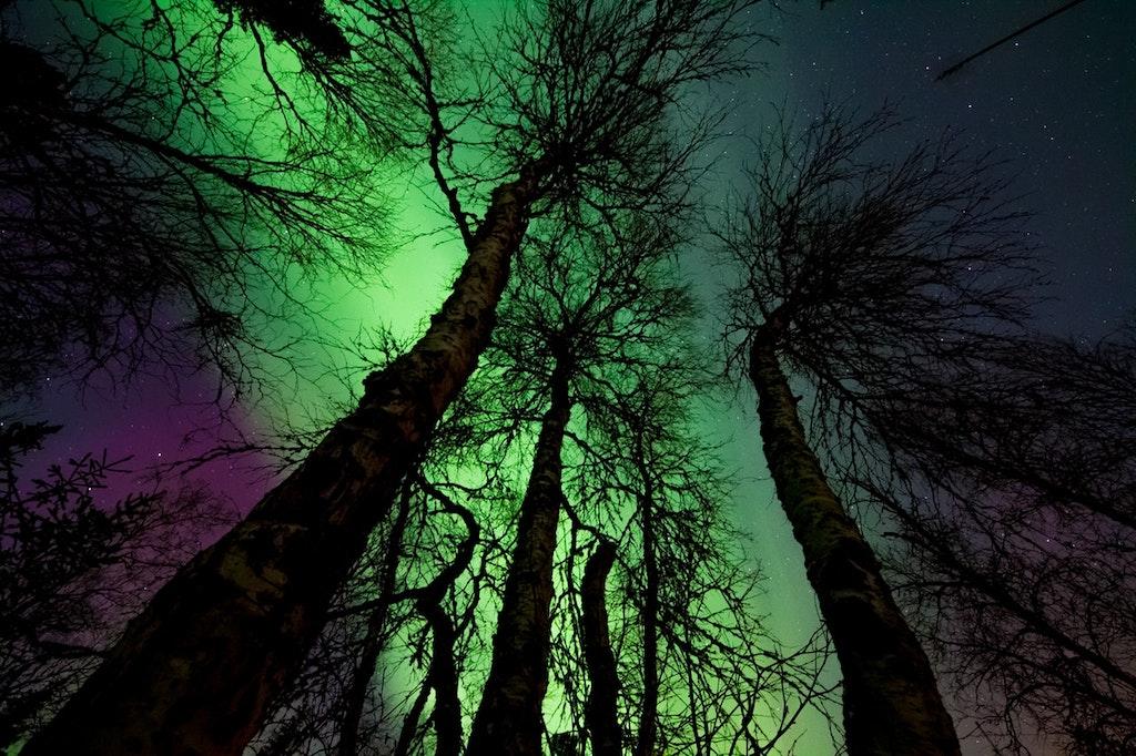 northern lights-shot