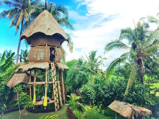 Firefly Eco Lodge, Unusual & Unique Places to Stay in Bali