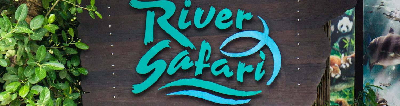 The River Safari