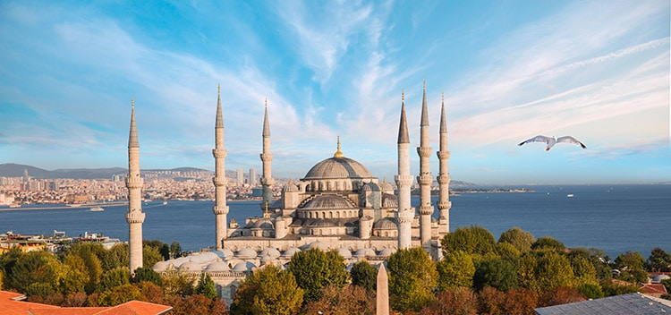 Blue mosque, famous mosques in Istanbul, turkey mosque,