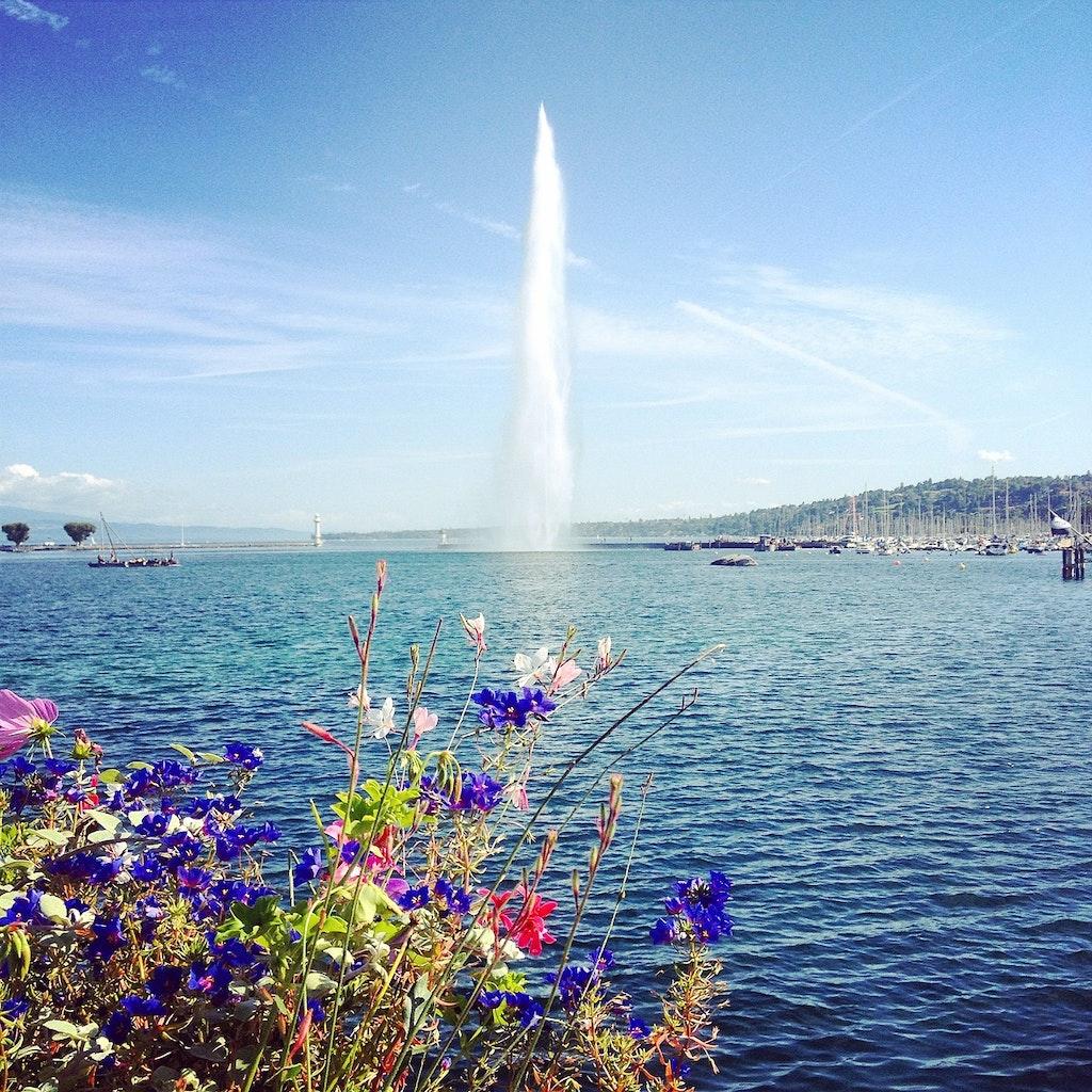Water Jet Geneva