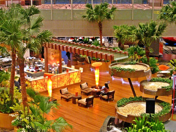 Restaurants at the jewel changi airport