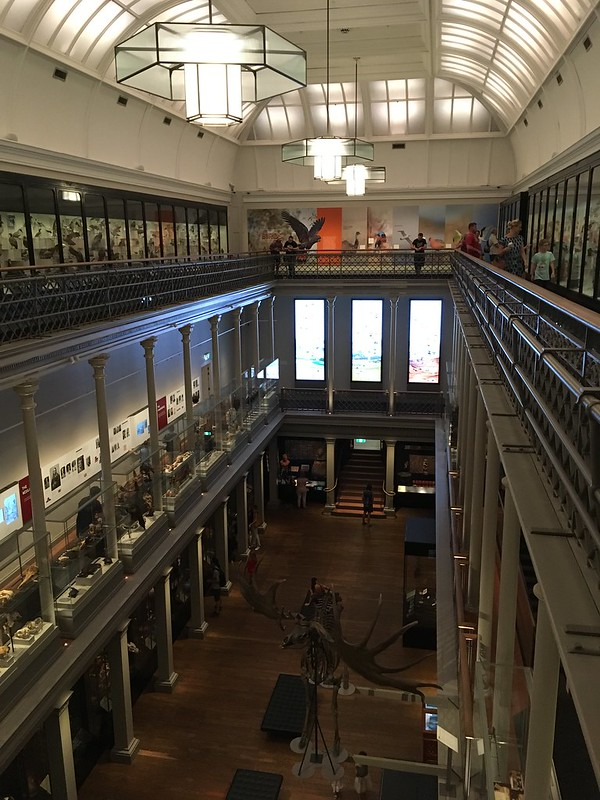 Long Gallery at the Australian Museum