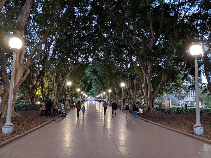 Walk at the Hyde Park