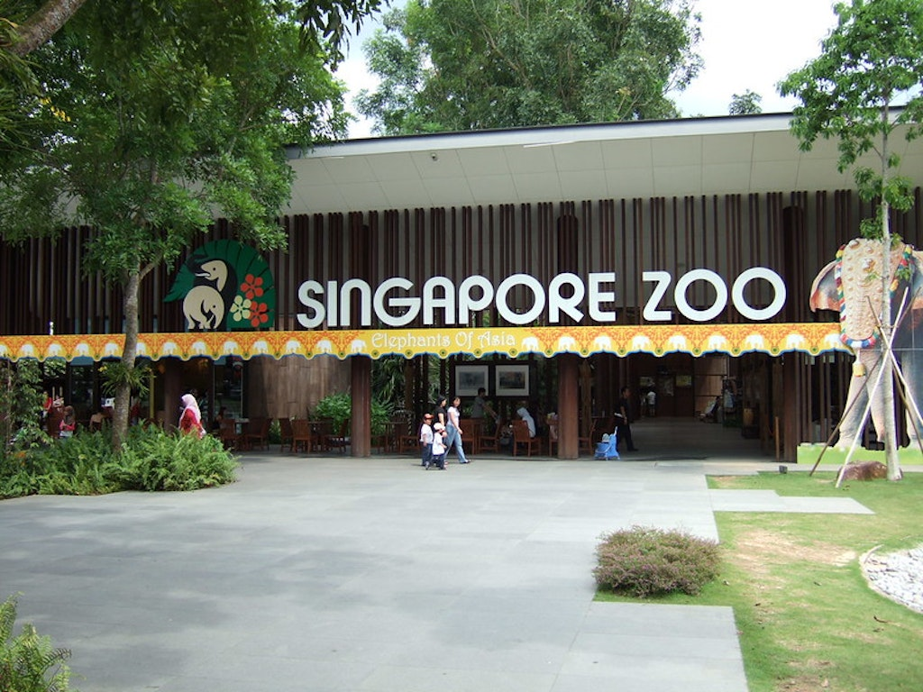 At the entrance of Singapore zoo.