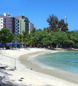 Male Artificial beach