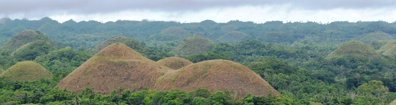 Things to do in Bohol
