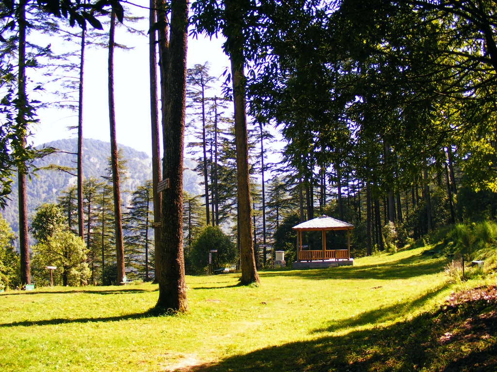 Lush green Meadows in Dhanaulti - adventure location among the Places to Visit in Uttarakhand.