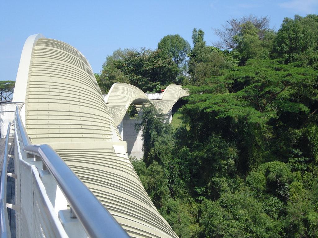 Henderson's wave bridge at the Southern Ridges