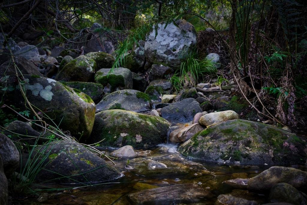 water flowing in between the rocks