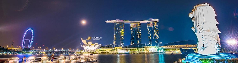 Merlion Marina in Singapore
