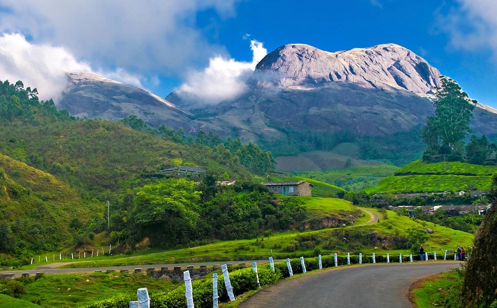 Munnar hill view