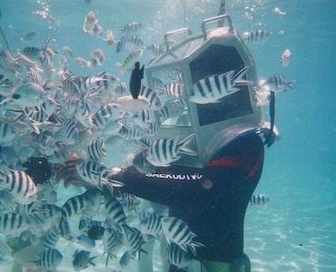 Underwater Sea Walking in Mauritius