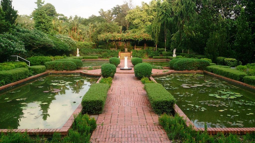 pathway at the botanic garden