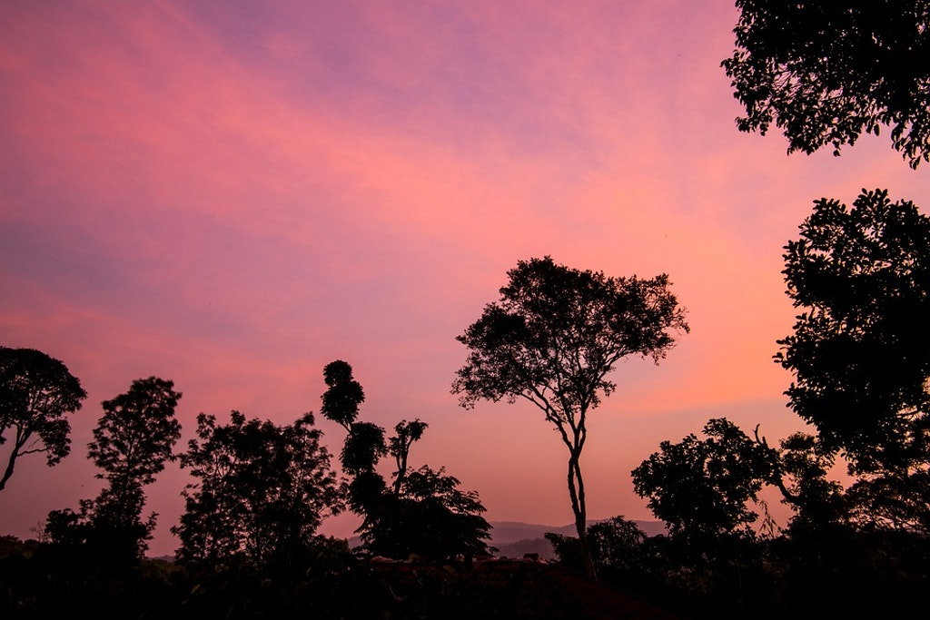 Sunset in Coorg