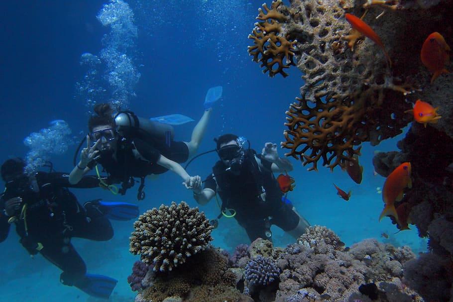 Scuba Diving in Koh Rin