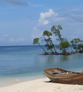 Havelock island in Andaman