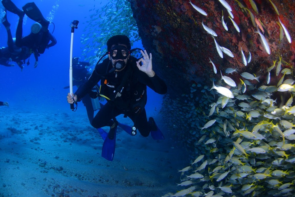 Scuba among marine life