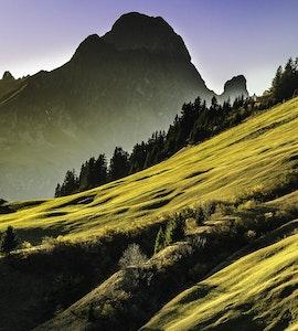Rolling hills Uttaranchal