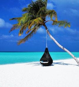 Hammock in Maldives Beach