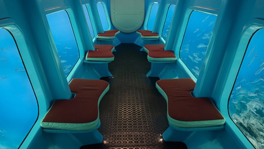 Whale Submarine Tours in Maldives