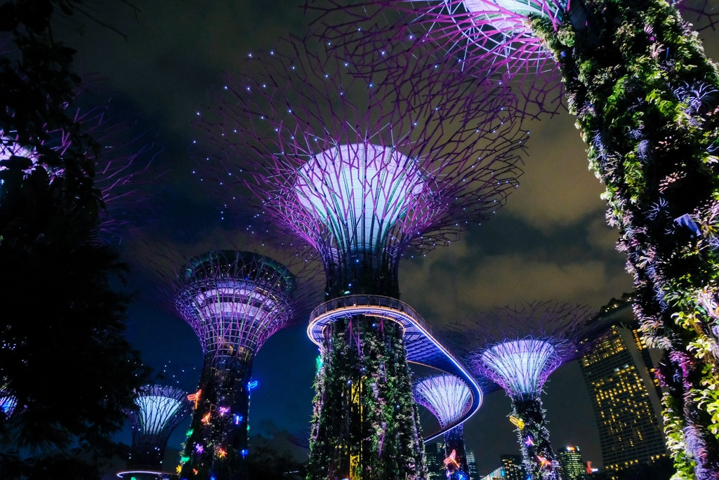 Gardens by Bay with the lights