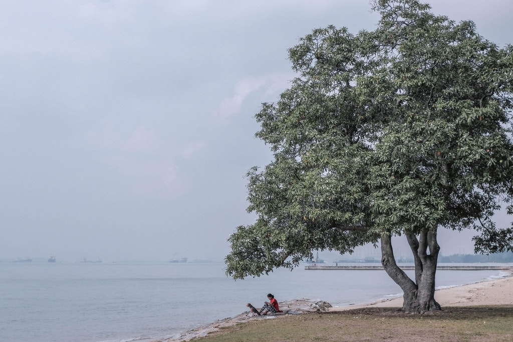 East coast park, best place to visit in Singapore