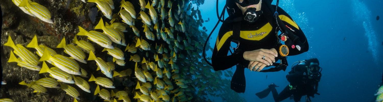 A scuba diver