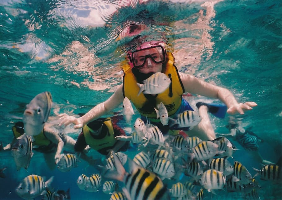 Snorkeling experience in Andaman