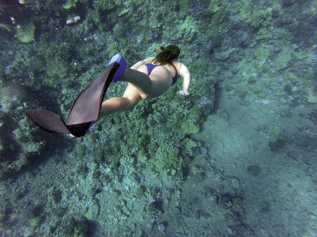 Scuba Diving at Seychelles