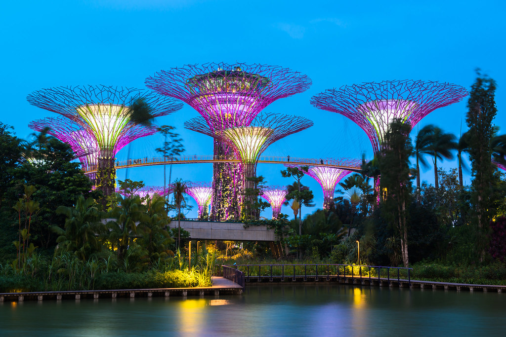 Super Trees, Gardens By the bay singapore