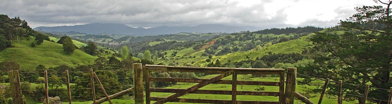 Near Panguru, Northland, New Zealand