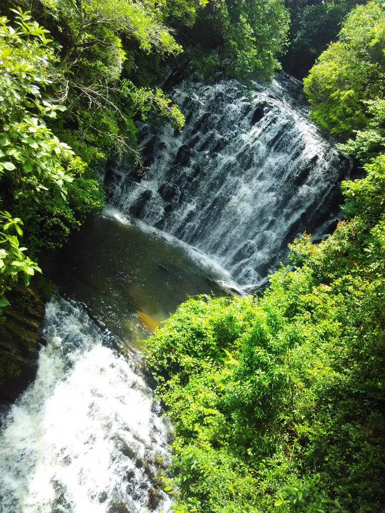 A view of the picturesque Elephant Falls in Shillong
