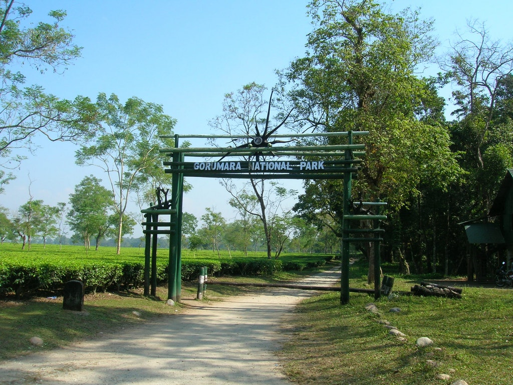 A picture of the entrance of Gorumara National Park