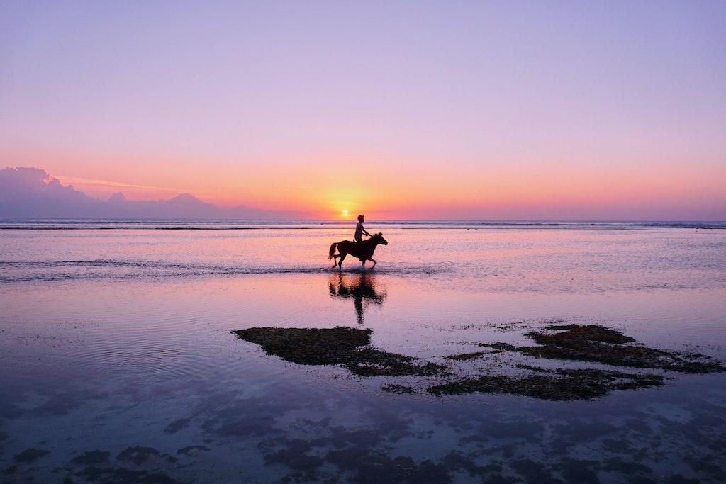Caribbean Adventure Horse ride on the beach