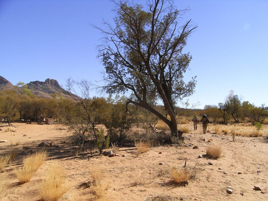 Larapinta Trail, Northern Territory, Australia.