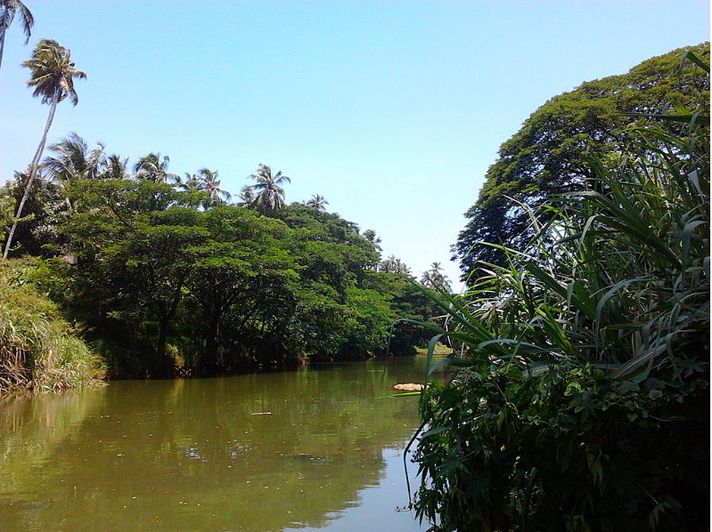 Karamana River is one of the tourist places to visit in Kovalam